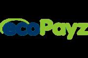 エコパイズ オフィシャルパートナー (Ecopayz Partners)